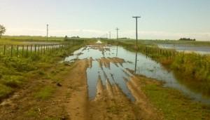 A-90007-01-2013-camino-rural-anegado