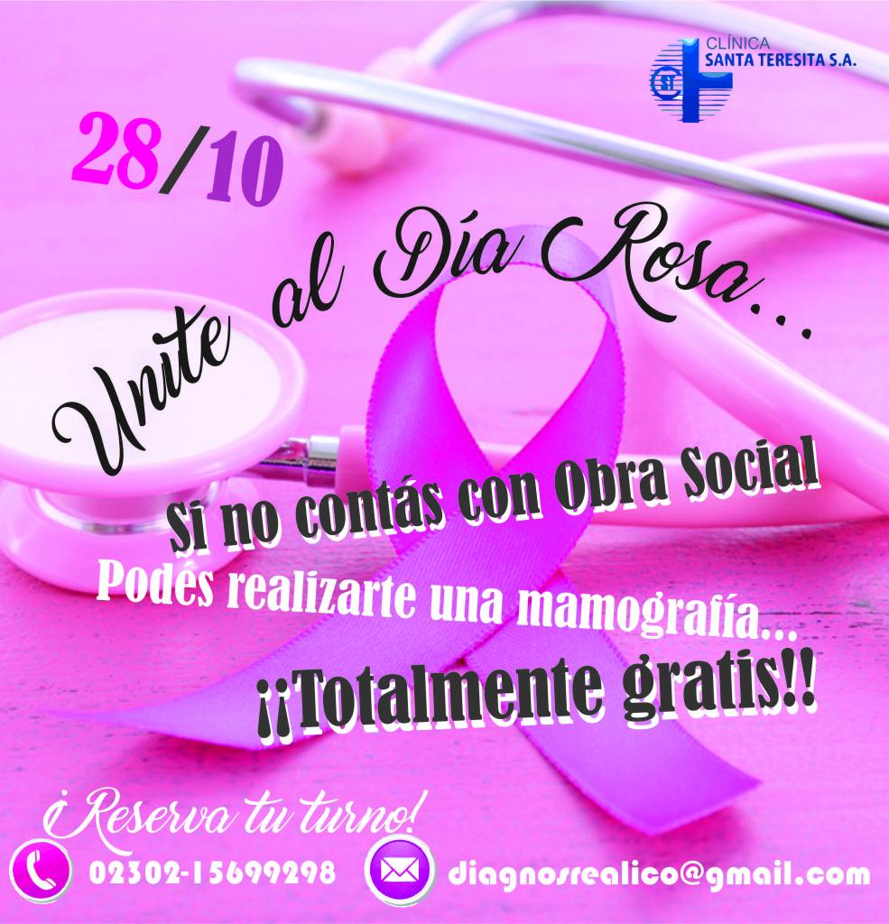 unitealdiarosa2l